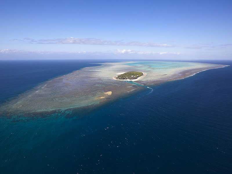 Australie - Heron Island