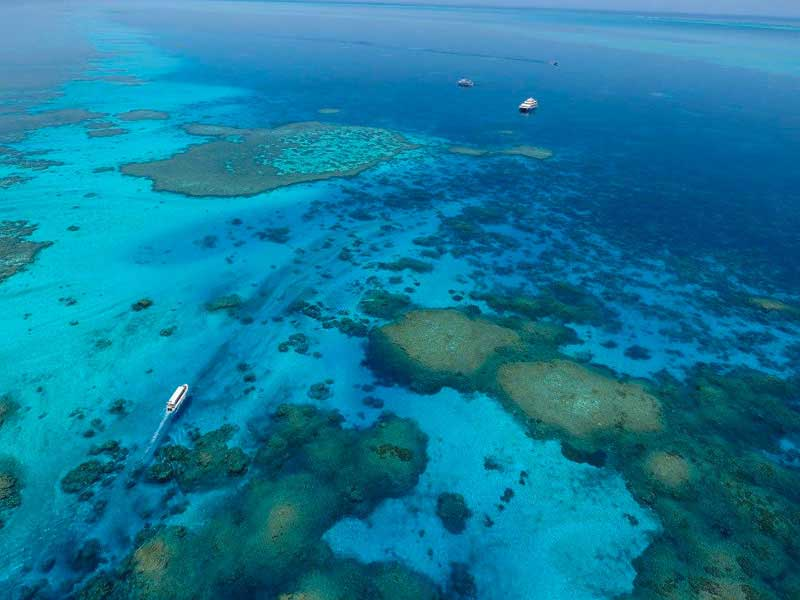 Australie - Kimberley - Odyssey Expeditions - Rowley Shoals
