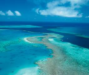 Whitsunday Reef