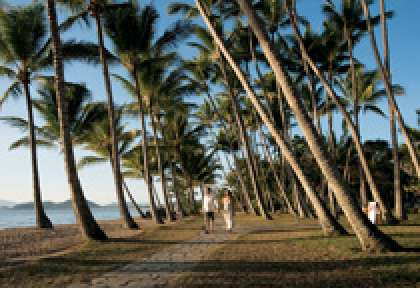 Queensland - Palm Cove