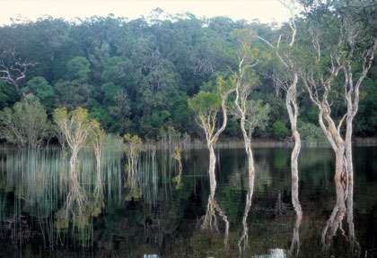 Ponna Lake et le Great Sandy National Park