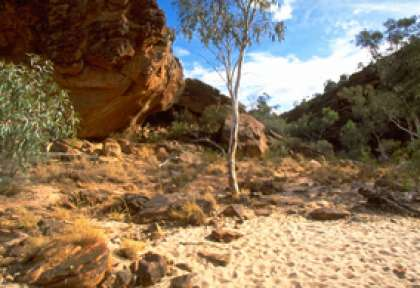 new south wales - parc national de Mutawintji