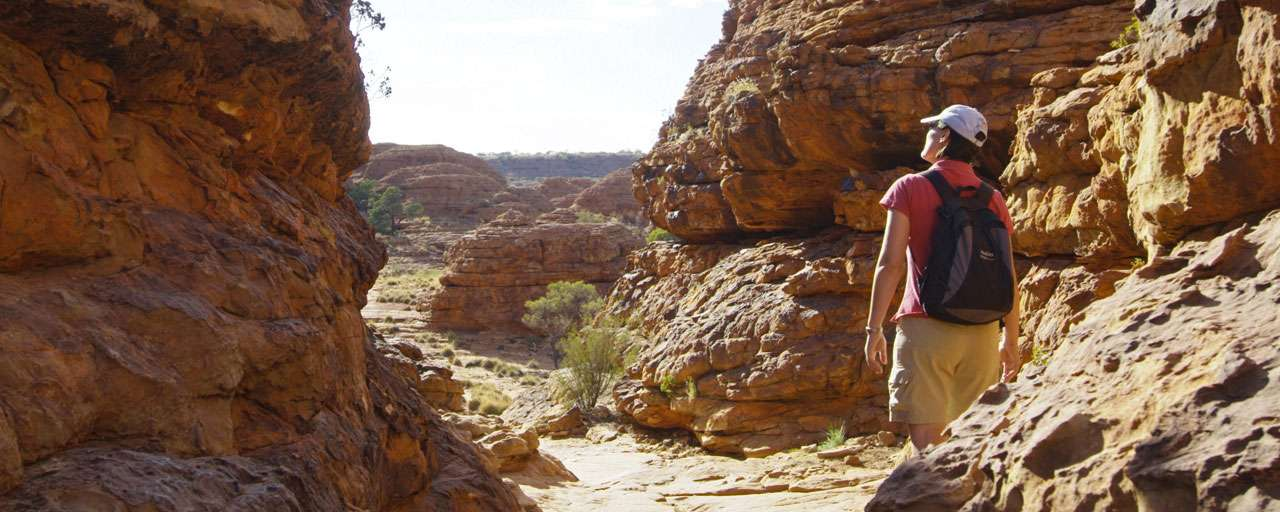 Watarrka National Park - Kings Canyon